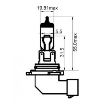 H12 12V53W/Universal